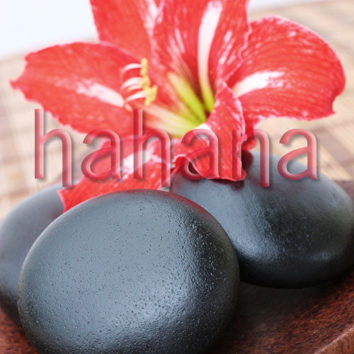 Professional Spa Kit - Hot Stone Massage (Carved Basalt Stones)